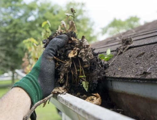Feeling Guttered: Unblocking and Cleaning Your Gutters