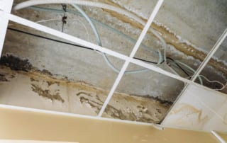 Damaged suspended ceiling with water leaks on wall and floor slabs